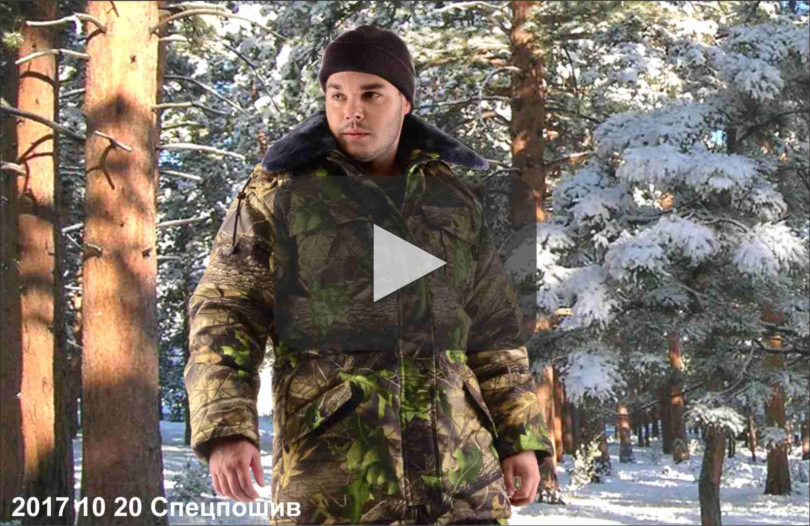 превью видео зима